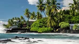 Kein Hawaii im Februar & Taupo abgesagt - Wir lassen euch nicht allein!