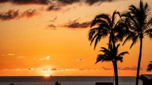 Hawaii Tagebuch 2019 - Morgen ist es soweit